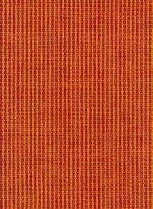 806 orange